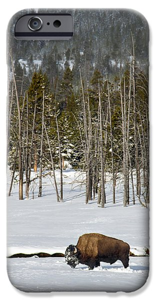 Recently Sold -  - Snow iPhone Cases - Yellowstone Winter iPhone Case by Alan Toepfer