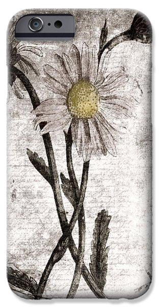 Yesterday's Garden II iPhone Case by Bonnie Bruno