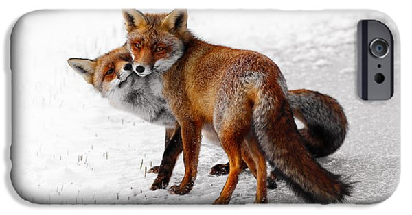 Wild Animals Photographs iPhone Cases - Yin Yang _ Red Fox Love iPhone Case by Roeselien Raimond