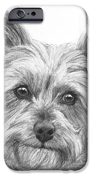 Dog Close-up Drawings iPhone Cases - Yorkie Drawing iPhone Case by Kate Sumners