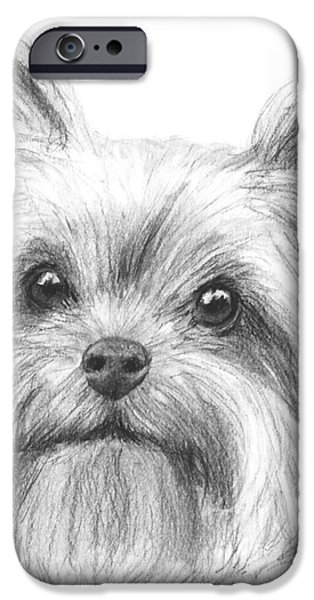 Dog Close-up Drawings iPhone Cases - Yorkshire Terrier Drawing iPhone Case by Kate Sumners