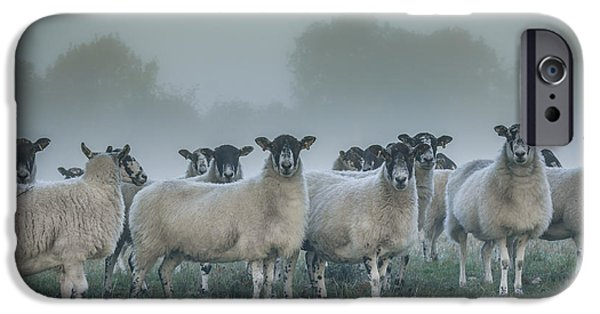Fletcher iPhone Cases - You and ewes army? iPhone Case by Chris Fletcher