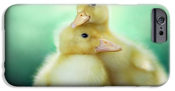 Animals Photographs iPhone Cases - You Make Me Smile iPhone Case by Amy Tyler