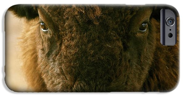 Bison Pyrography iPhone Cases - YOU SHALL NOT PASS sepia iPhone Case by Peggy Detmers