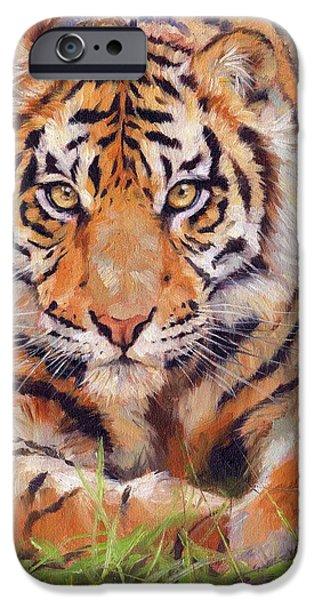 David iPhone Cases - Young Amur Tiger iPhone Case by David Stribbling