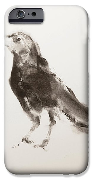 Animal Pastels iPhone Cases - Young Crow iPhone Case by Janet Goddard