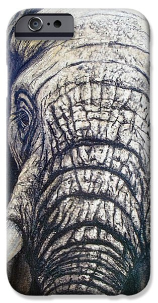Elephants Pastels iPhone Cases - Young Elephant Portrait iPhone Case by David Clode