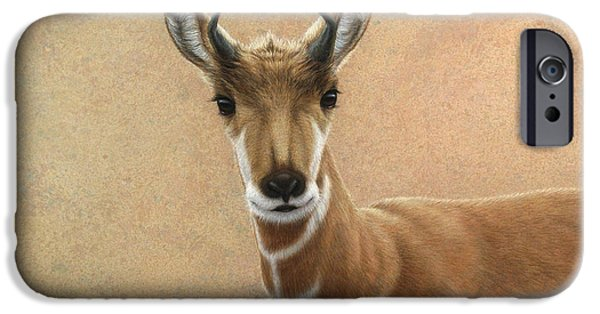 Animal Drawings iPhone Cases - Young Pronghorn iPhone Case by James W Johnson