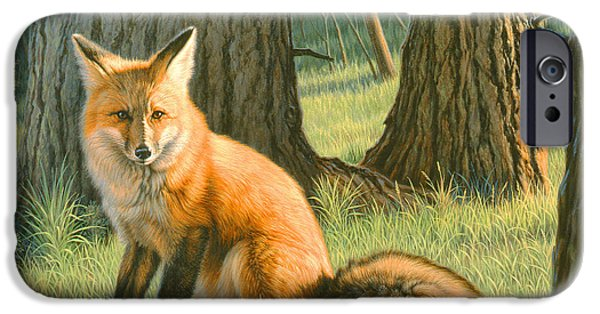 Red Fox iPhone Cases - Young Red iPhone Case by Paul Krapf