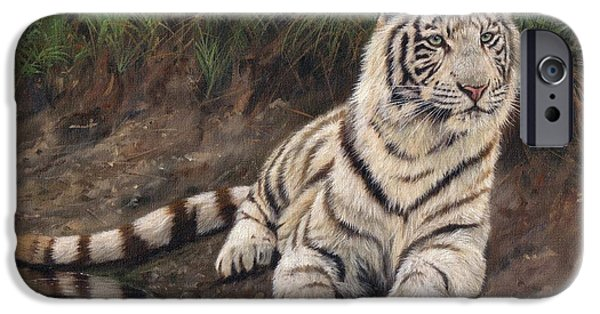 Bengal Tiger iPhone Cases - Young White Tiger iPhone Case by David Stribbling