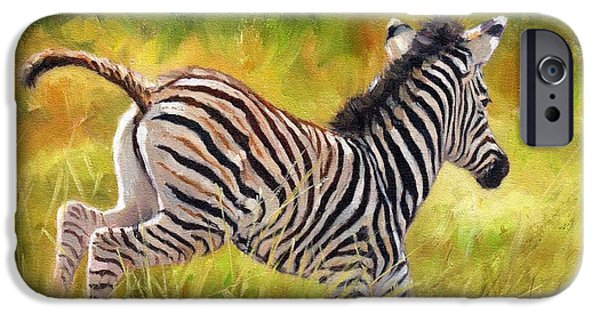 Zebra iPhone Cases - Young Zebra iPhone Case by David Stribbling