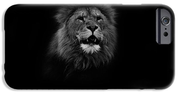 Lion Photographs iPhone Cases - Your Gonna Hear me Roar iPhone Case by Martin Newman
