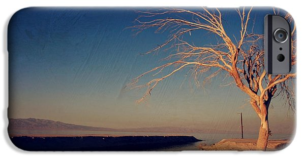 Lone Tree iPhone Cases - Your One and Only iPhone Case by Laurie Search