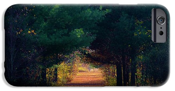 Michelle iPhone Cases - Your Path Your Way iPhone Case by Michelle McPhillips