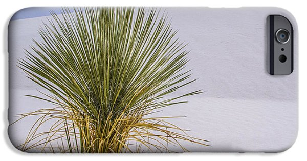 Symetry iPhone Cases - Yucca at White Sands iPhone Case by Jean Noren