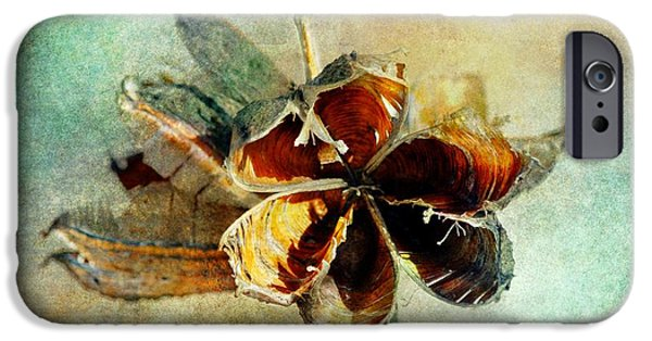 Barbara Chichester Digital iPhone Cases - Yucca Pod - Barbara Chichester iPhone Case by Barbara Chichester