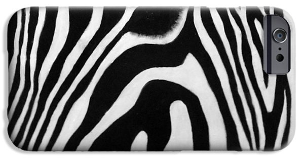 American ist Mixed Media iPhone Cases - Zebra 13 iPhone Case by Jane Biven