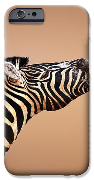 zebra calling iPhone Case by Johan Swanepoel