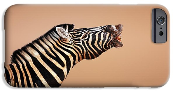 Mouth iPhone Cases - Zebra Calling iPhone Case by Johan Swanepoel