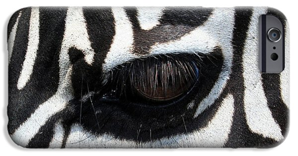 Photography Photographs iPhone Cases - Zebra Eye iPhone Case by Linda Sannuti