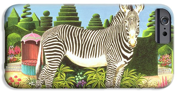 Zebra iPhone Cases - Zebra In A Garden iPhone Case by Anthony Southcombe