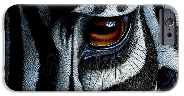 Zebra iPhone Cases - Zebra iPhone Case by Jurek Zamoyski