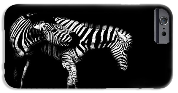 Light And Dark  iPhone Cases - Zebra Stripes iPhone Case by Martin Newman