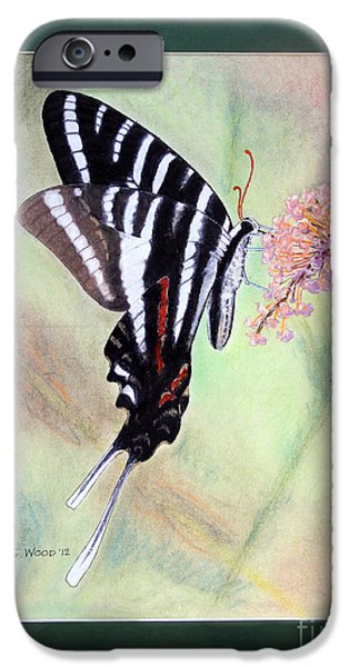 Stripes Pastels iPhone Cases - Zebra Swallowtail Butterfly by George Wood iPhone Case by Karen Adams