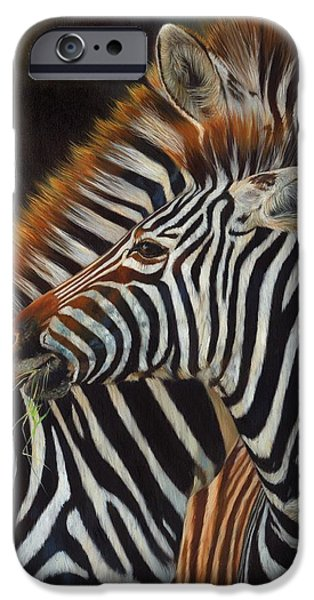 Zebra iPhone Cases - Zebras iPhone Case by David Stribbling