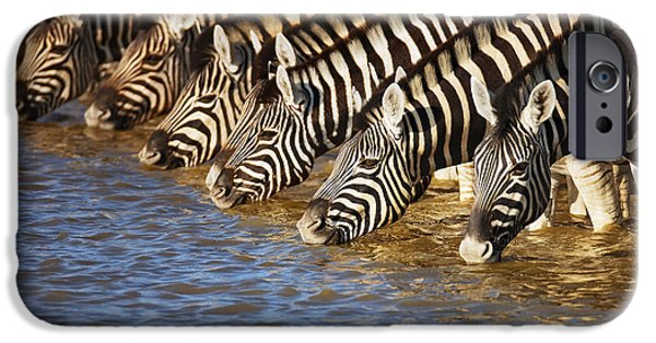 Stand iPhone Cases - Zebras drinking iPhone Case by Johan Swanepoel