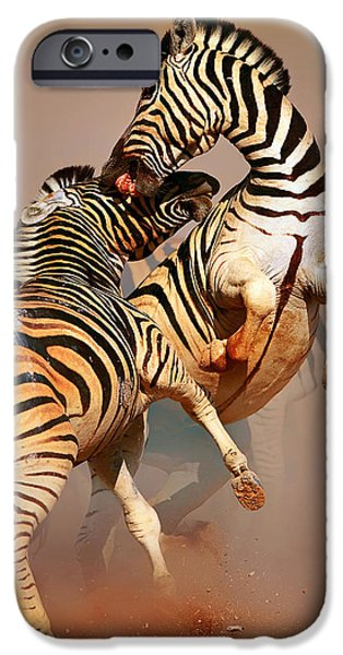 Biting iPhone Cases - Zebras fighting iPhone Case by Johan Swanepoel