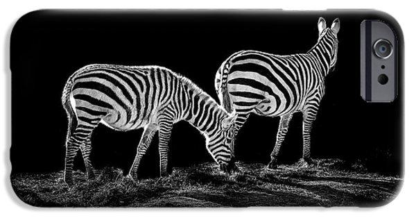 Zebras iPhone Cases - Zebras  iPhone Case by Paul Neville