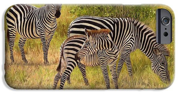 Zebra iPhone Cases - Zebras South Luangwa iPhone Case by David Stribbling