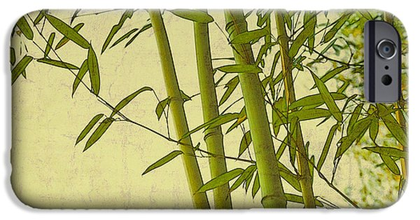Interior Scene iPhone Cases - Zen Bamboo Abstract I iPhone Case by Marianne Campolongo