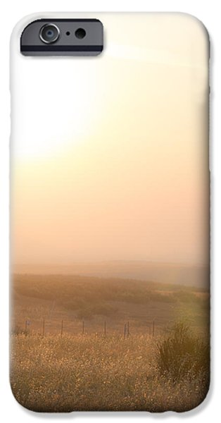 Temecula iPhone Cases - Zen for a Dollar iPhone Case by Peter Tellone