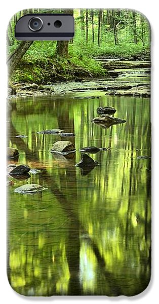 Zen In The Forest iPhone Case by Adam Jewell