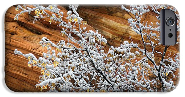 Red Rock iPhone Cases - Zion Snow Branch Pattern #2 iPhone Case by Rich Trinter