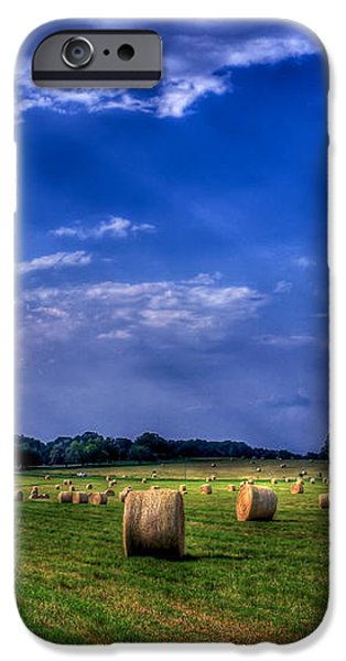 Zippy's Hayfield Showered by Sunrays iPhone Case by Reid Callaway