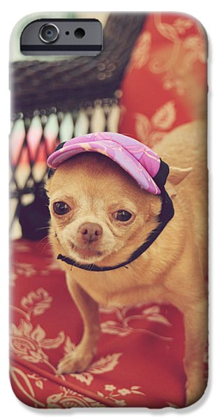Tiny Dogs iPhone Cases - Zoes Visor iPhone Case by Laurie Search