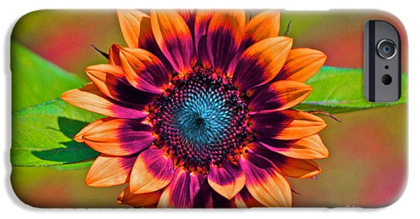 Louisa May Alcott iPhone Cases -  Orange Flowers In Their Buttonholes iPhone Case by Gwyn Newcombe