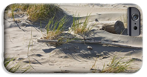 Driftwood iPhone Cases -  Sand And Driftwood Popham Beach Maine iPhone Case by Keith Webber Jr