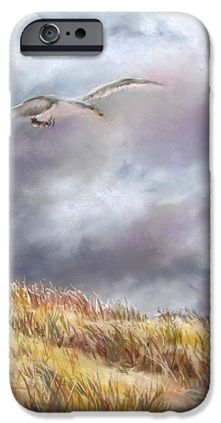 Jack Skinner Pastels iPhone Cases -  Seagull Flying Over Dunes iPhone Case by Jack Skinner