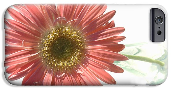 Popular iPhone Cases - 0653a1-4 iPhone Case by Kimberlie Gerner