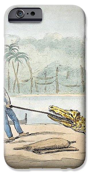 1826 Naturalist Charles Waterton & Caiman iPhone Case by Paul D Stewart