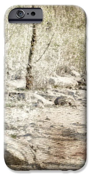 a couple in the woods iPhone Case by Joana Kruse