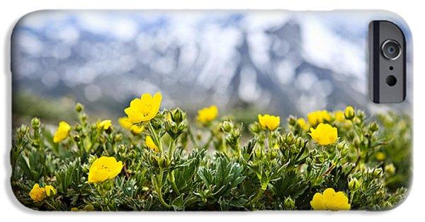 July iPhone Cases - Alpine meadow in Jasper National Park iPhone Case by Elena Elisseeva