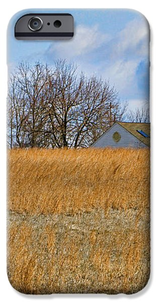 Artist in Field iPhone Case by William Jobes