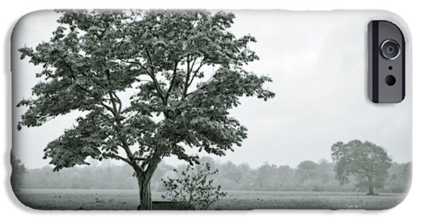 Sombre iPhone Cases - August In England iPhone Case by Andy Smy