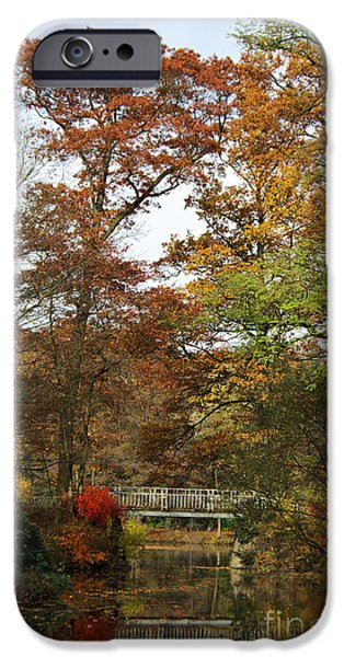 Autumn Trees iPhone Cases - Autumn forest iPhone Case by Angela Doelling AD DESIGN Photo and PhotoArt