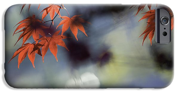 Autumn Photographs iPhone Cases - Autumn Red  iPhone Case by Rob Travis